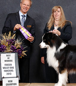 Marcy with Tazz, Champion, Fraser Valley Dog Fanciers 2013